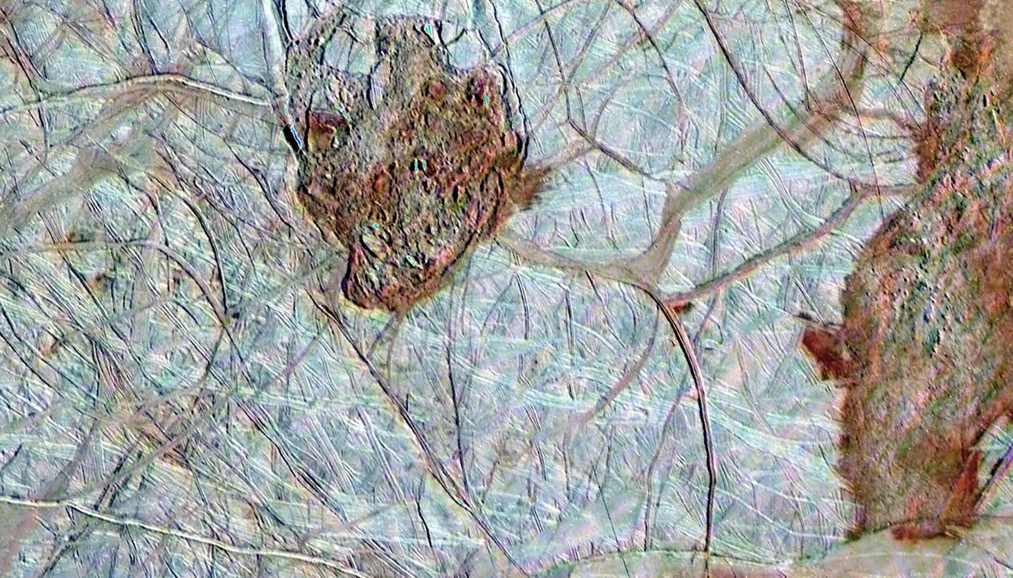 [Image: galileo-europa-surface-8.jpg]